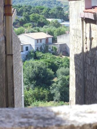 ASINELLO BIANCO 6