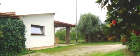 Villa Corbezzoli 4