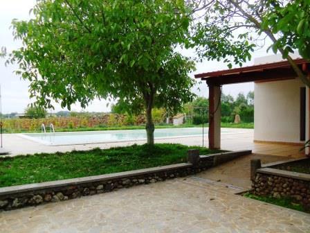 Villa Corbezzoli 8
